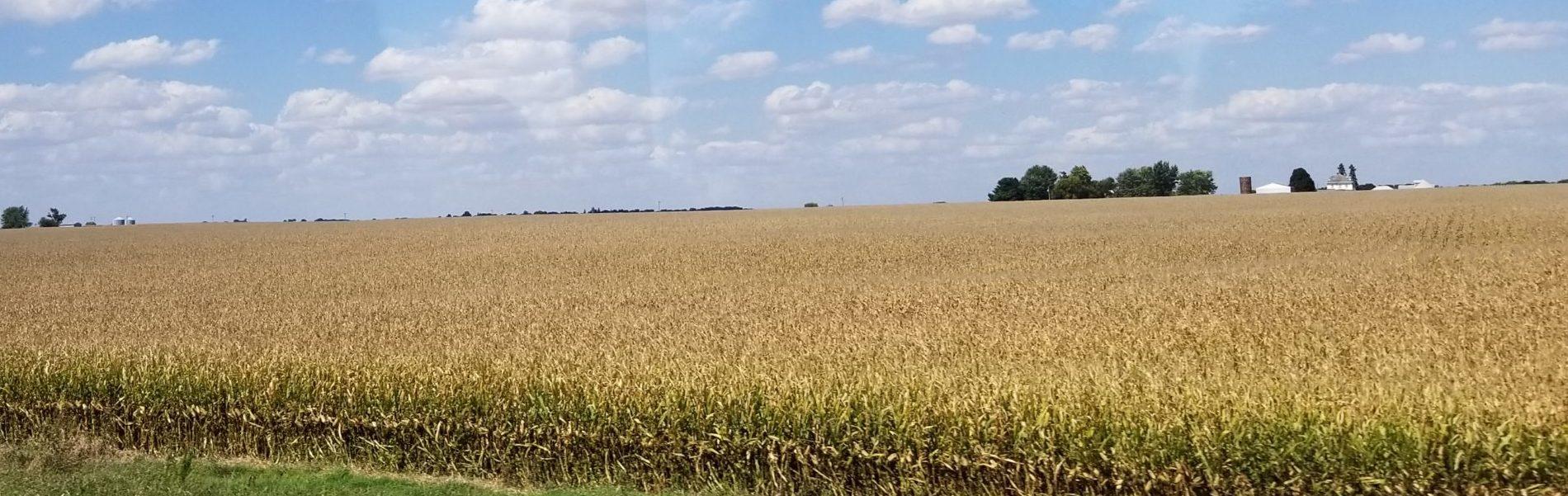 大穀倉地帯(ネブラスカ州)