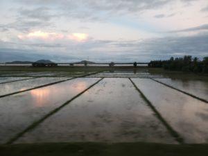 ベトナム統一鉄道の車窓風景(ハノイ~サイゴン)